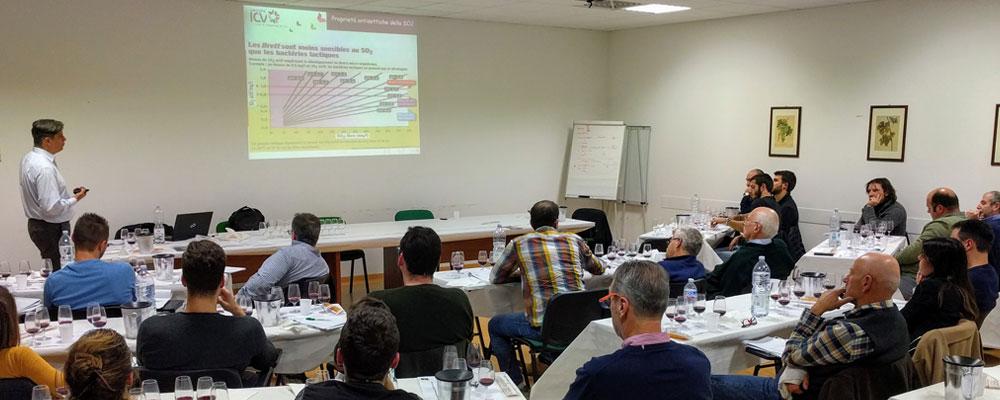 Corsi e seminari formazione aggiornamento professionale pratica enologica e viticola
