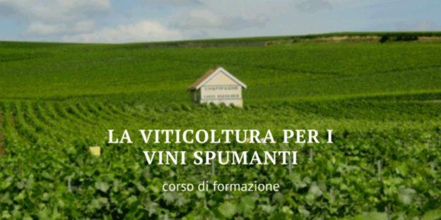viticoltura-spumanti