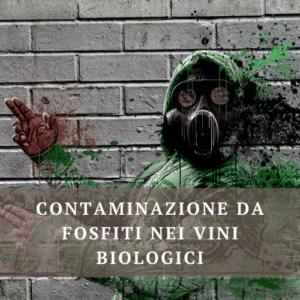 Fosfiti vino biologico