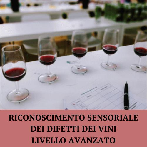 Difetti vini livello avanzato
