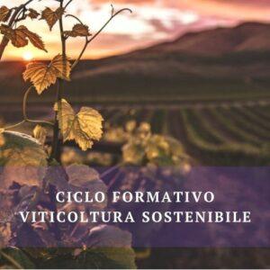Viticoltura sostenibile