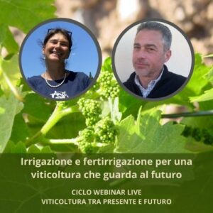 Irrigazione e fertirrigazione per una viticoltura che guarda al futuro